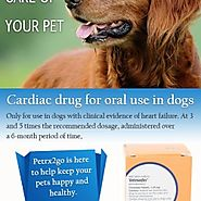 Take care of your dog with vetmedin