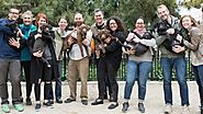 This Puppy Family Reunion is The Ultimate Happy Ending