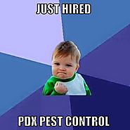 PDX Pest Control | Facebook