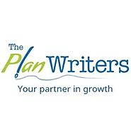 Business Plan Writer or Software – The Choice is Yours!