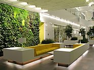 Awesome Indoor Garden and Interior Plant Decoration Ideas