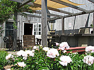 Kick off the Weekend with Great Wine & Great Food on a North Fork Summer Evening: Shinn Estate Vineyards Wine Bar Fri...