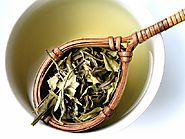 White Tea Skin Benefits - Tea for Skin - Tea For Beauty