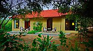 Experience the Uniqueness at JIM CORBETT Cottages