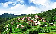 Attraction, Travel agents, Things To Do, Popular Places, Ooty India – VTripIndia
