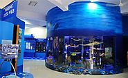 Puducherry Science Centre & Planetarium - Tours to Puducherry Science Centre & Planetarium in Pondicherry, Travel to ...