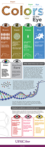 Infographic: Eye Color Breakdown Guide | UPMC HealthBeat