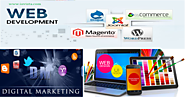 Dallas Digital Marketing, Dallas Web Design and Dallas web Development