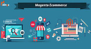 Magento eCommerce to build sites that address particular execution