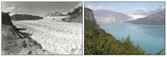 Glacier Photograph Collection