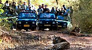 Bandhavgarh Tiger Reserve Tour Packages #India