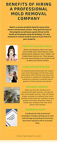 Benefits of Hiring a Professional Mold Removal Company