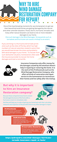 Why to hire Wind Damage Restoration Company for repair?