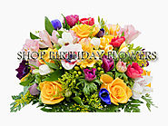 Gifts Delivery in Ahmedabad | Florist store in Ahmedabad - Giikers