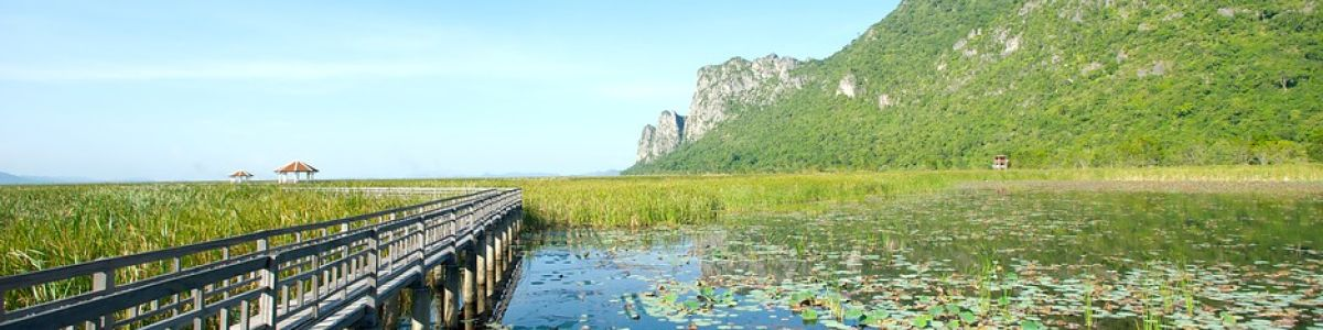 Headline for National Parks Near Hua Hin – Nature, Wildlife, and Serenity