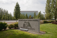 Electronic Arts i nowy CEO