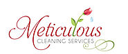 Meticulous Cleaning Services