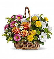 Best Online Flower Shop Delivery Dubai, Sharjah