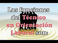 Video Curso Tecnico en Orientacion Laboral