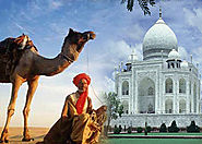 5 Day Golden Triangle Trip, India Golden Triangle Tour Packages