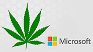 The #Cannabis Industry & #Microsoft (giving us some love)