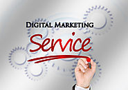 Avail Digital Marketing Services, Offer Best Customer Services