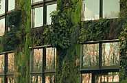 12 convincing benefits of a vertical garden - Nature Holds the Key