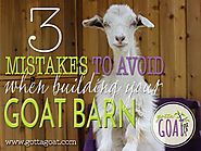 3 Mistakes to Avoid When Building Your Goat Barn
