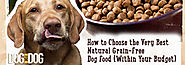 How to Choose the Very Best Natural Grain-Free Dog Food (Within Your Budget)