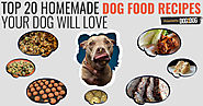Healthy Homemade Dog Food Recipes Your Dog Will Love