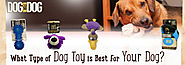 What Type of Dog Toy is Best For Your Dog