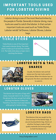 Important Tools Used For Lobster Diving
