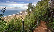 Sublime Point Walking Track