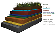 What is a Green Roof?