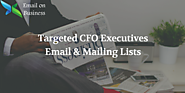 CFO Mailing List | CFO Email Database - Chief Financial Officers Lists