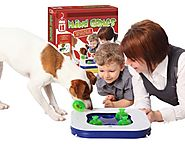 Best Smart Toys for Dogs