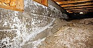 Basement Waterproofing Maryland Is Better Performed Before A Major Storm