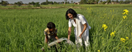 The Greenpeace Challenge: A Water Pump (R)Evolution For Indian Farmers
