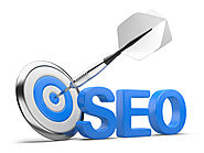 FETCH NON STOP ORGANIC TRAFFIC WITH AN SEO EXPERT FOR YOUR BUSINESS