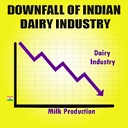 Downfall of Indian dairy industry