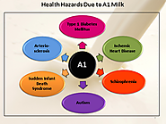 Risk factors of A1 milk