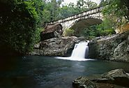 Discover the Allures of Paluma Range – Paluma Range National Park, Crystal Creek QLD