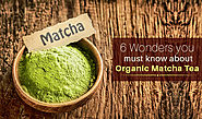6 Wonders You Must Know About Organic Matcha Tea - Green Hill Tea Blog