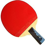DHS X3007 Table Tennis Racket Set-ping Pong Penhold Paddle