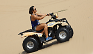 Local Desert Safari Dubai Tours With Sunrise, Bird - Morning Desert Safari with Breakfast