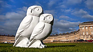 Minerva's Owls Bath Sculpture Trail | Bath, UK, Summer 2018