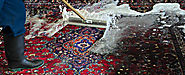 Different Methods for the Oriental Rug Cleaning
