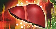 Implementation of Bioengineering to build Human Liver - Insights care