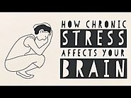 How Stress Affects Your Brain