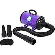 Flying One High Velocity 4.0 Hp Motor Dog Pet Grooming Force Dryer w/ Heater